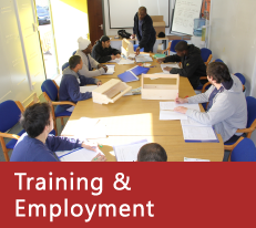 Training & Employment